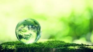 دنیای سبز یکتاپژوه-2